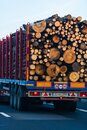 Back view of loaded European truck with sawed cutted woods in motion on asphalt road, transportation and delivery concept. Detail Royalty Free Stock Photo