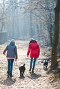 stock image of  Back view of two teen girls walking with a dogs - Cold morning t