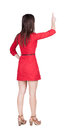 Back view of young brunette woman pointing at wall beautiful girl in dress rear people collection backside person Stock Image