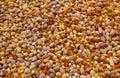 Backgroound Nuts mezclado Fotografía de archivo libre de regalías