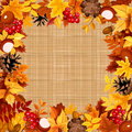 Background with autumn colorful leaves on a sacking fabric. Vector eps-10.