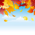 Background with autumn leaves Stock Photo