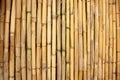Background of bamboo stalks Royalty Free Stock Photo