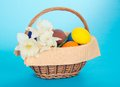 Background basket easter eggs flowers taken white Στοκ φωτογραφίες με δικαίωμα ελεύθερης χρήσης