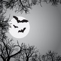 Background with bats Stock Photo