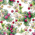 Background of berries of raspberriWatercolor illustration