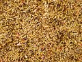 Birdseed with different colorful seeds. Background with birdseed. Royalty Free Stock Photo