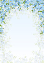 Background with blue forget-me-not flowers. Vector illustration. Royalty Free Stock Photo