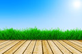 Background with blue sky and green grass Royalty Free Stock Photo
