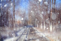 Background blur bokeh cityscape park autumn Royalty Free Stock Photo
