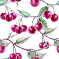 Background branch with cherries. Seamless pattern. Royalty Free Stock Photo