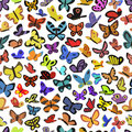 Background of butterflies seamless texture consisting images Royalty Free Stock Photography