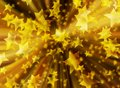 Background christmas stars gold zoom blur illustration new year Royalty Free Stock Photo