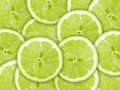 Background with citrus-fruit of lime slices Stock Photos
