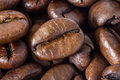 Background with coffee beans Stock Photography