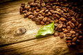 Background of coffee beans on rustic driftwood brown roasted old grungy weathered planks with a fresh green leaf copyspace and Royalty Free Stock Photos