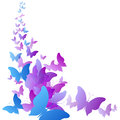 Background of colorful butterflies flying