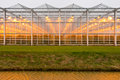 Background commercial greenhouse Stock Photos