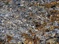 Background of conglomerate rock with many small rocks Royalty Free Stock Photos
