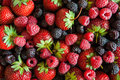 Background  of different berries Royalty Free Stock Photo