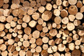 Background of firewood stacked to dry in a pile outdoors Stock Images