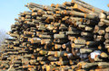 Background of firewood stacked in the woodpile Stock Image