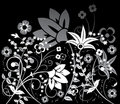 Background flower, elements for design, vector Royalty Free Stock Photo