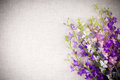 Background with flowers Stock Photography