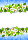 Background with flowers and place for text Royalty Free Stock Photo