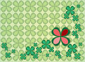 Background four leaf clovers green clover pattern with red leaves Stock Photos