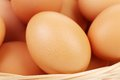 Background of fresh eggs for sale at a market on white Royalty Free Stock Photo