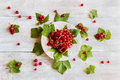 Background: fresh red currant on white vintage plate, berries and green leaves on light wooden table, top view Royalty Free Stock Photo