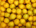 Background of fresh yellow plums close up ripe mellow cherry pattern top view Stock Image