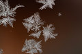 Background from a frosty pattern and snowflakes on window abstract Royalty Free Stock Image