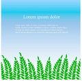 Background with green fern leaves, white Lorem Ipsum on blue vector illustration