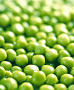 Background of green peas Stock Image
