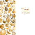 Background with hand drawn by color pencil sepia retro stylish f Royalty Free Stock Photo