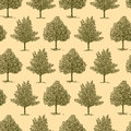 Background with a hand drawn trees Stock Images