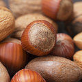 Background of heap of nuts macro Stock Photography