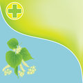 Background with linden twig and cross as symbol of green pharmacy Royalty Free Stock Images