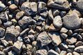 Background with little grey stones. Stone, surface Royalty Free Stock Photo