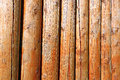 Background of log stockade covered with a varnish Royalty Free Stock Photos