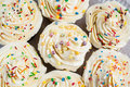 Background lot of cupcakes with cream and colored sugar sprinkle Royalty Free Stock Photo