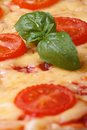 Background margarita pizza close up. vertical Royalty Free Stock Photo