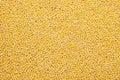 Background Of Millet