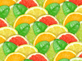 Background with motley citrus slices and leaf Stock Images