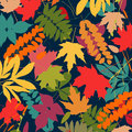 Background with multicolor autumn leaves. Vector illustration.