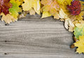 Background of multicolored autumn leaves on the old wooden boards Royalty Free Stock Images