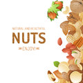 Background with nuts bright different Royalty Free Stock Images