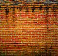 Background of an old brick wall at thai Royalty Free Stock Photo